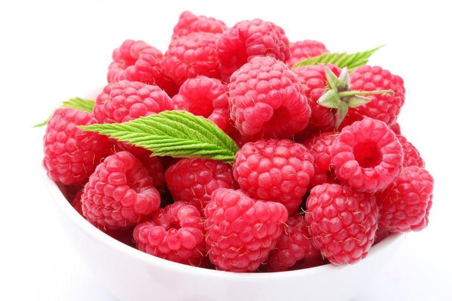 Малину начинают употреблять постепенно, с 1-2 ягод в день
