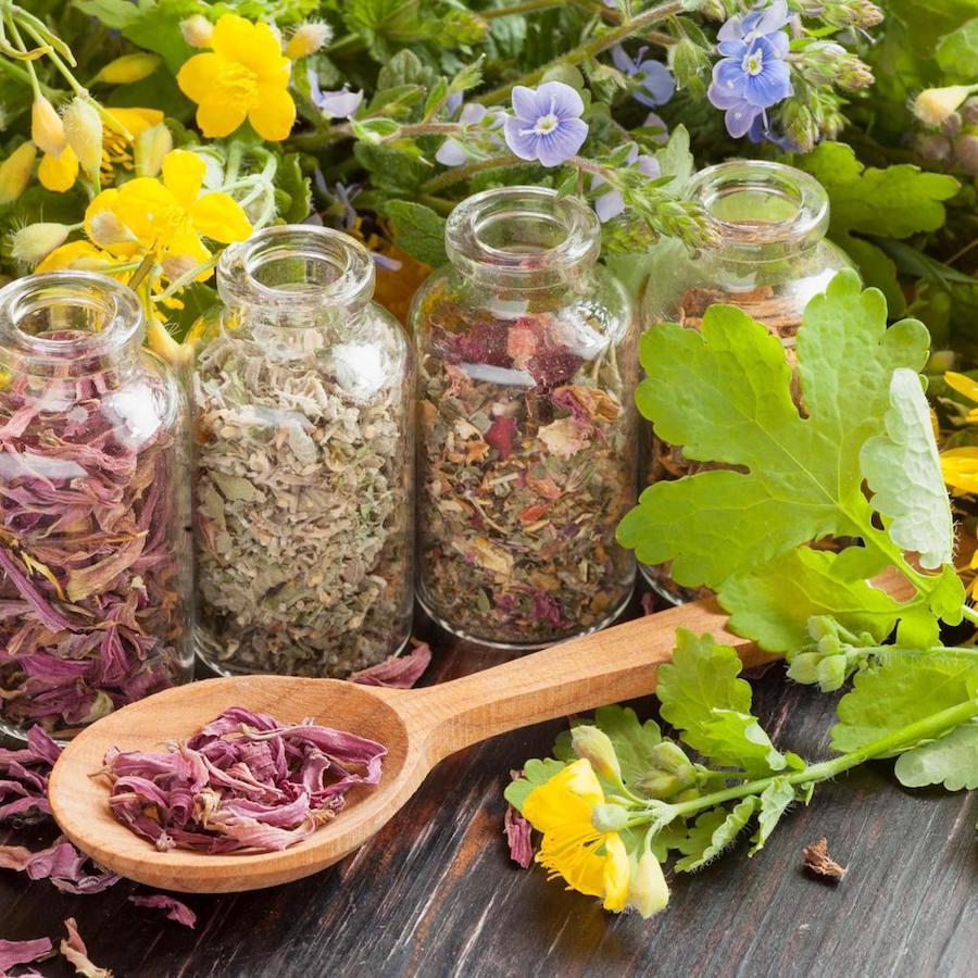 Травы для поджелудочной железы при лечении панкреатита